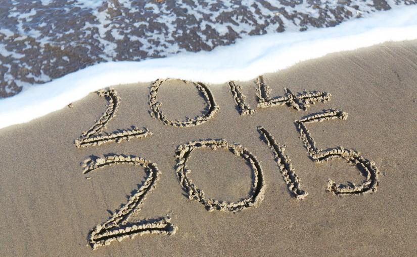 2015 个人年度计划